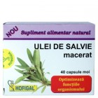 Ulei De Salvie Macerat - Hofigal