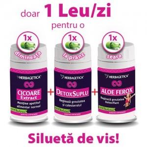 Cicoare Extract + Detox Suplu + Aloe Ferox Pachet slabit