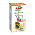 Digestie Usoara