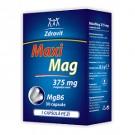 MaxiMag-MgB6