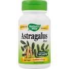 Astragalus 470mg
